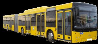 МАЗ 215069 (5 дверных проемов)